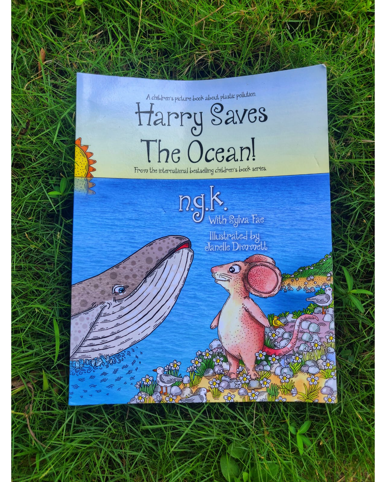 Review: Harry Saves The Ocean!