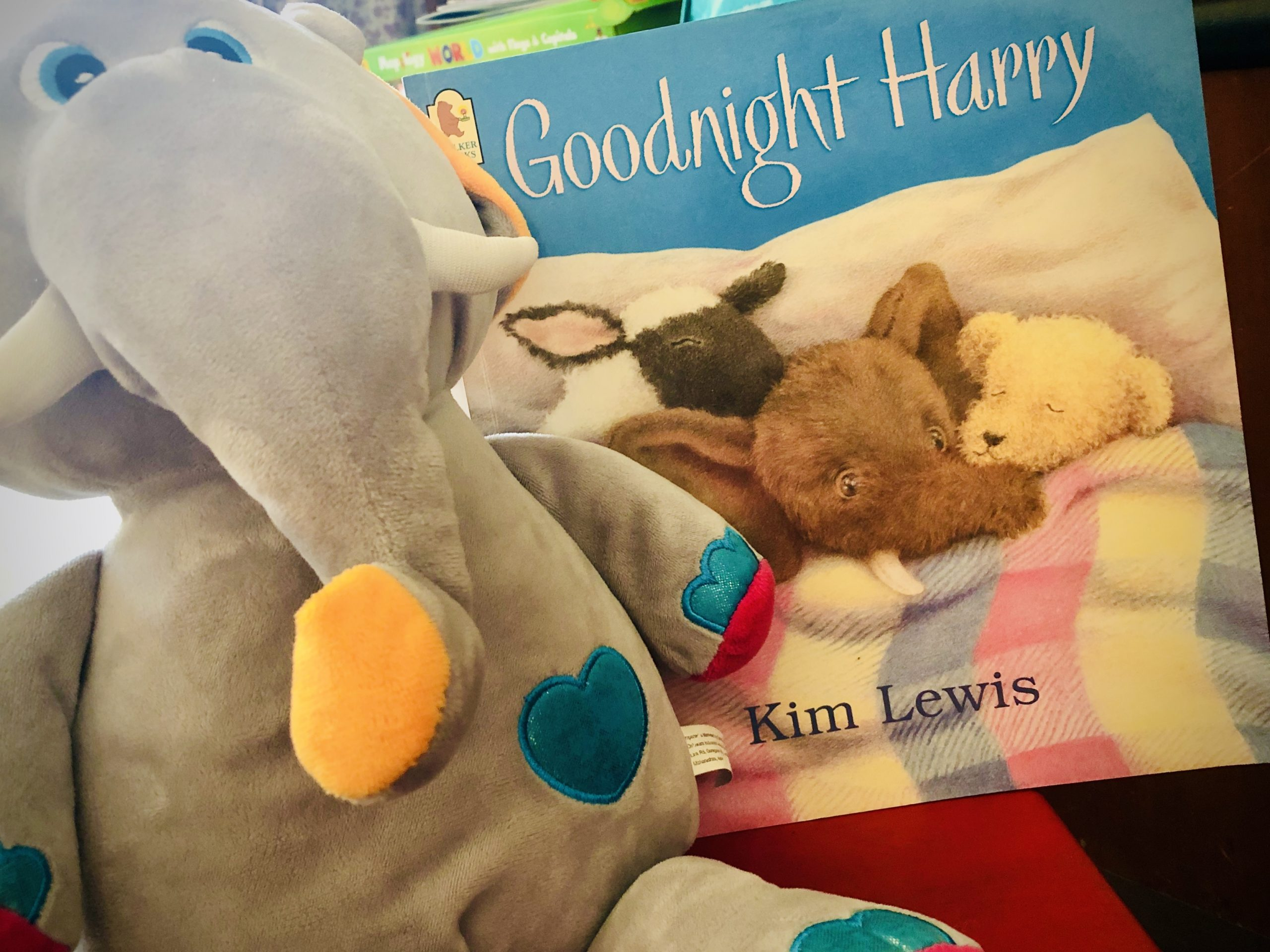 Review: Goodnight Harry