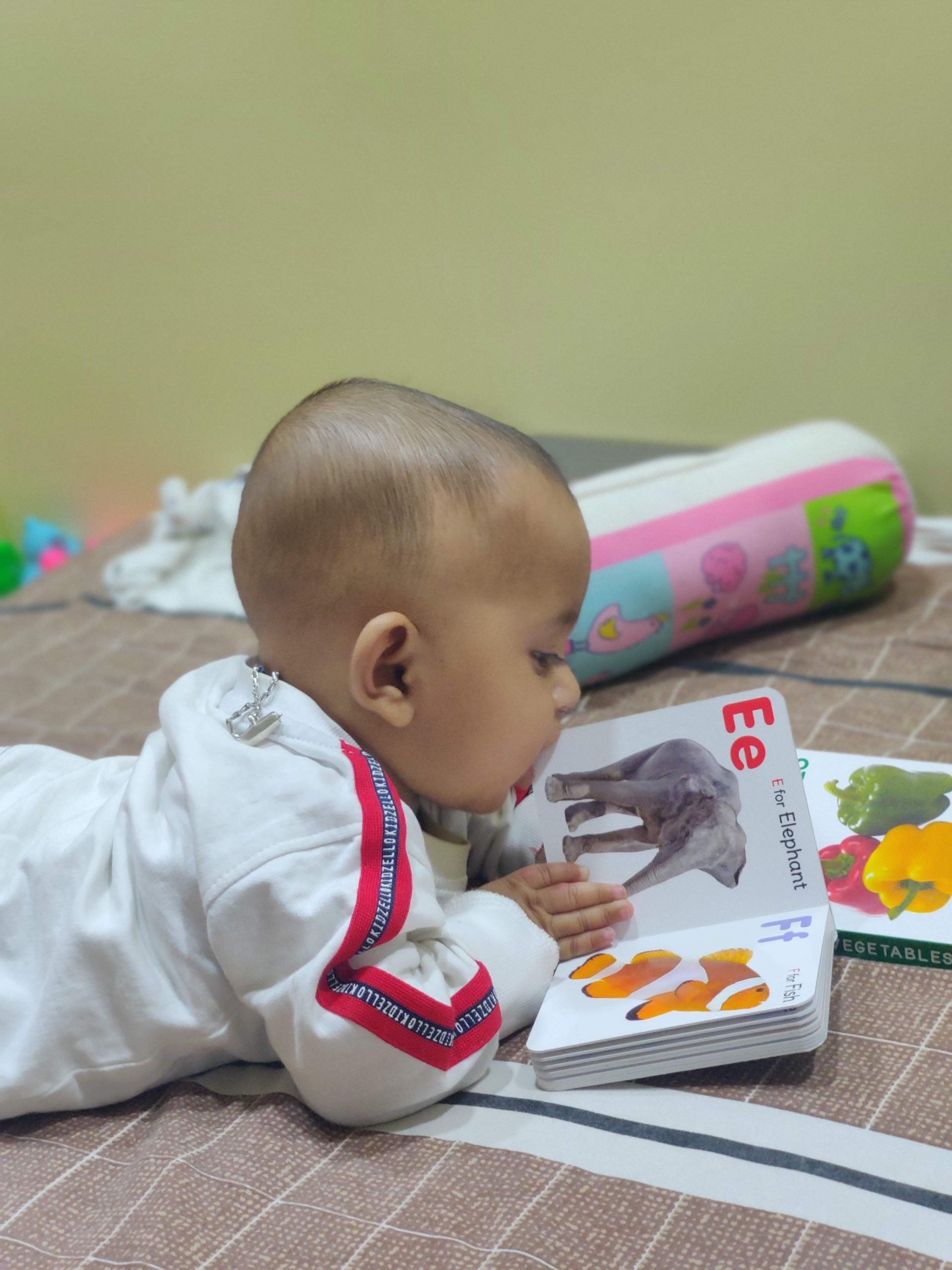 Starting The Reading Journey With Your Little One!